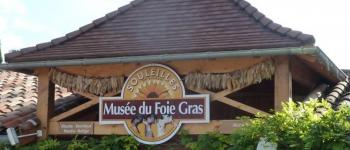Grande fête du Foie Gras Frespech
