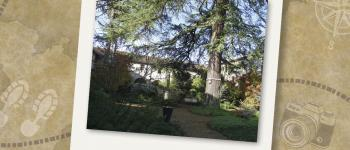 Visites Estivales 2021 - A la découverte des arbres de la ville Bressuire