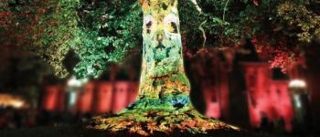 Spectacle \conte et lumière\ au jardin des Cloîtres Bressuire