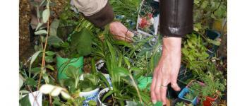 Troc plantes, troc végétal Val en Vignes