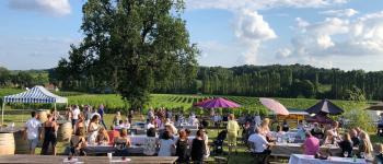 REPORTÉE Soirée vin, barbecue et musique dans les vignes au Domaine du Grand Mayne Villeneuve-de-Duras