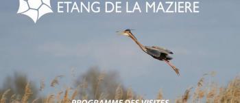 Fête de la nature : Visite de la Réserve Naturelle de l\étang de la Mazière Villeton