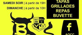 Bodega de Duras par AOCC DURAS RUGBY XV Duras
