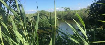 Accueil naturaliste sur le Domaine de Fleury Le Teich