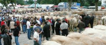 Foire aux bovins - annulé 2020 Garris