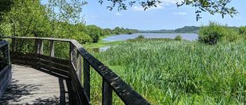 Randonnée découverte sur le circuit naturaliste du Marais d\orx Labenne