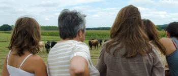 Visite de la ganaderia Maynus Saint-Sever