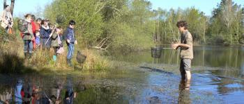 Petite pêche en mare Audenge