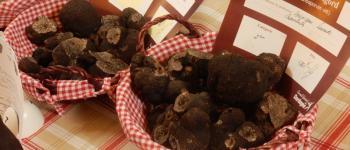 Marché contrôlé de producteurs locaux de truffes Brantôme en Périgord
