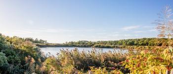 Balade naturaliste sur le site des Quinconces avec la PEP 33 Andernos-les-Bains