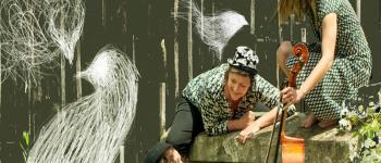Oiseau Margelle Le Teich