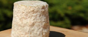 Rencontres - Une saison qui a du goût - Visite de la fromagerie de Fontenille Fontenille-Saint-Martin-dEntraigues