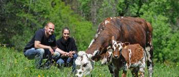Rendez-vous à la ferme : Visite guidée et dégustation Castétis
