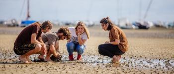 Balade et pêche à pied à marée basse - MODE EXPERT Arès