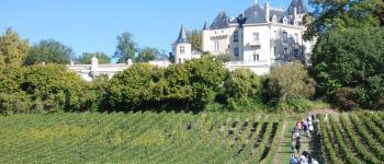 La Ronde des Vignobles en Fronsadais Saint-Germain-de-la-Rivière