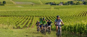 Fête du vélo près de Blaye Berson