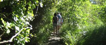 Les visites guidées de la Réserve Naturelle de l\Etang Noir Seignosse