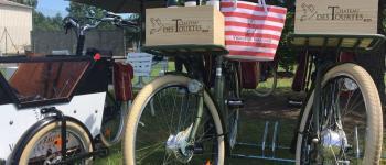 La Bulle Verte: Exploration tranquille du vignoble à vélo électrique au château des Tourtes Val-de-Livenne