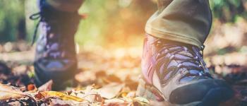 Randonnée pédestre avec Rando Nature Moutier-Rozeille