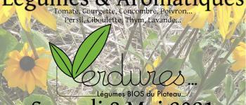 Vente de plants de légumes et d'aromatiques bio Gentioux-Pigerolles