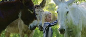 J\apprends à m\occuper de mon âne Peyrat-le-Château