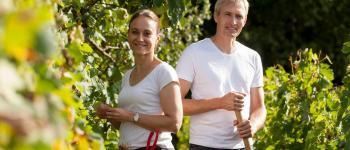 Vignes ouvertes, sols couverts : A la rencontre d'une viticulture durable Lapouyade